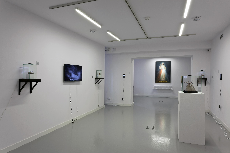 Cud, widok wystawy
