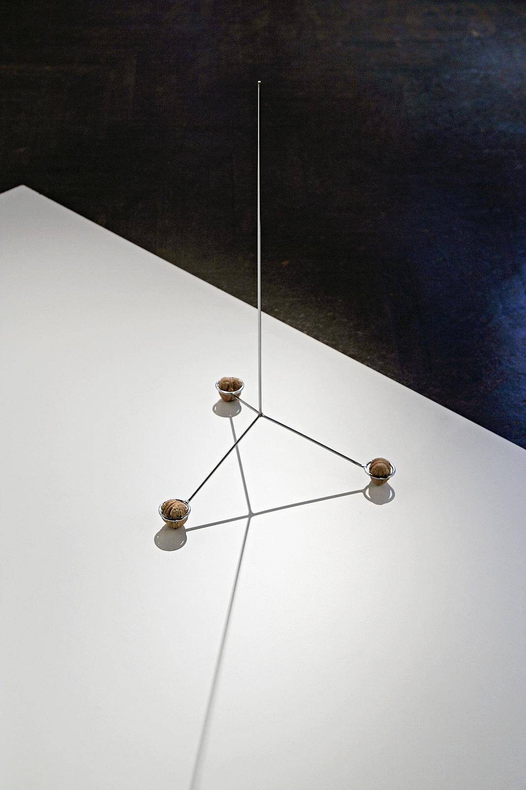 Antena, 2013, stal chromowana, orzechy włoskie, fot.A.Rerak