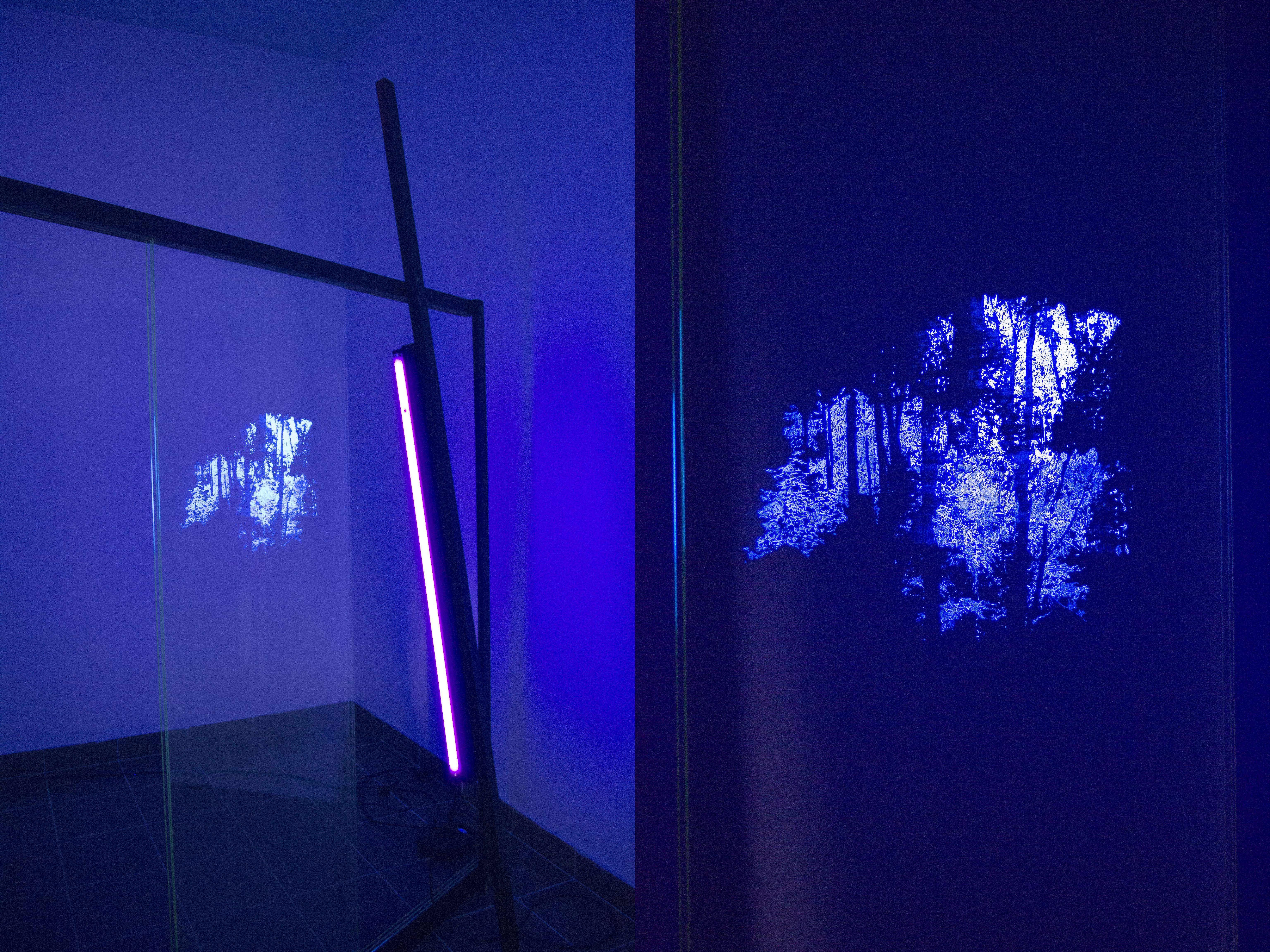 Judith Röder ,Okno IV, 2013, szkło, drewno, światło fluorescencyjne
