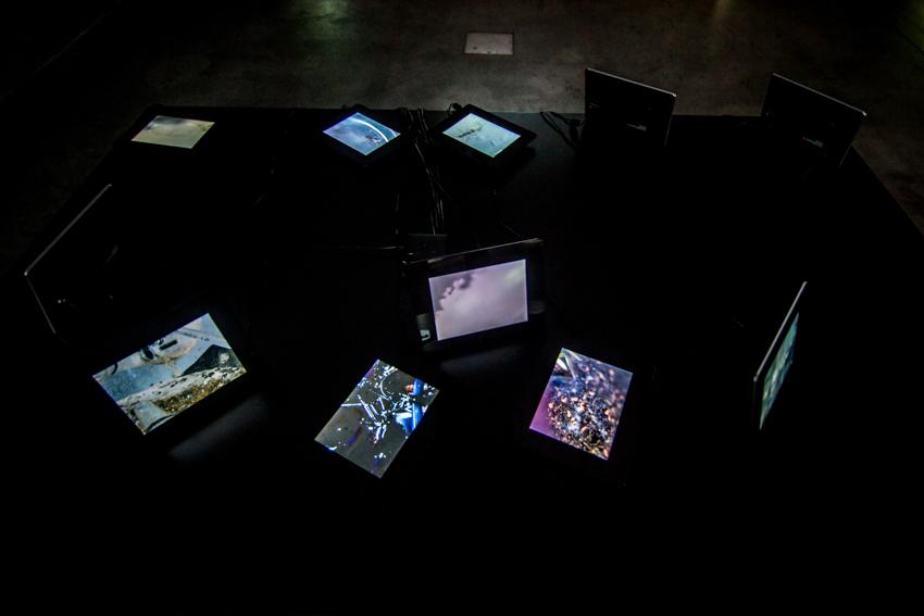 Biennale WRO Resume, wystawa Resume, Elvin Flamingo, Symbiotyczność tworzenia