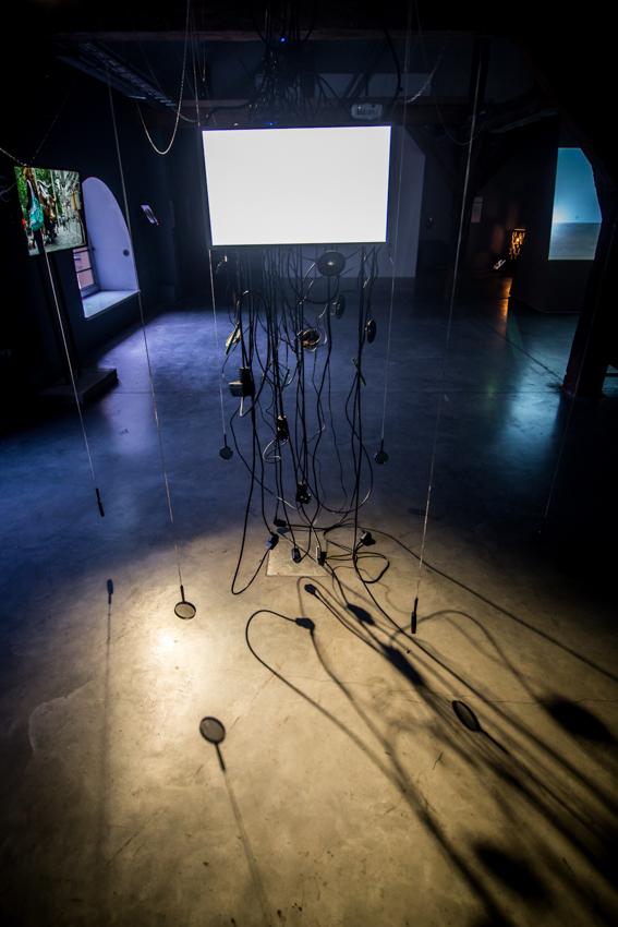 Biennale WRO, wystawa Resume, Karina Smigla-Bobinski, Simulacra