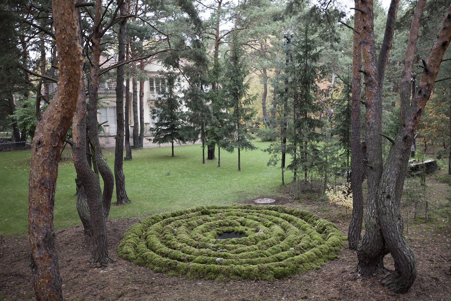 """Habima Fuchs, Agawa, 2015, dzięki uprzejmości Open Art Projects iartystki, praca zrealizowana wramach projektu """"Otwock"""" fot.Maciej Landsberg"""