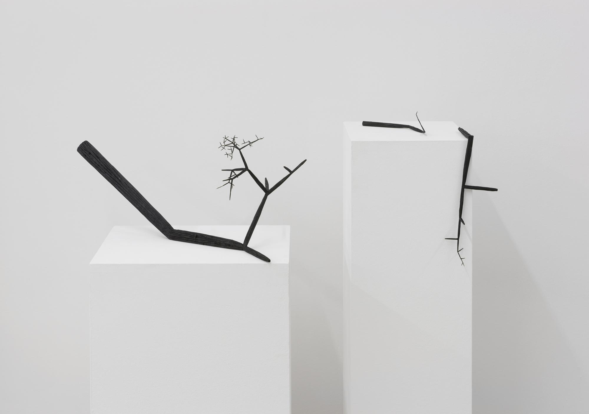 Szymon Kobylarz Fibonacci Chaos, widok wystawy, 2015 © dzięki uprzejmości artysty iGalerii ŻAK  BRANICKA, Berlin