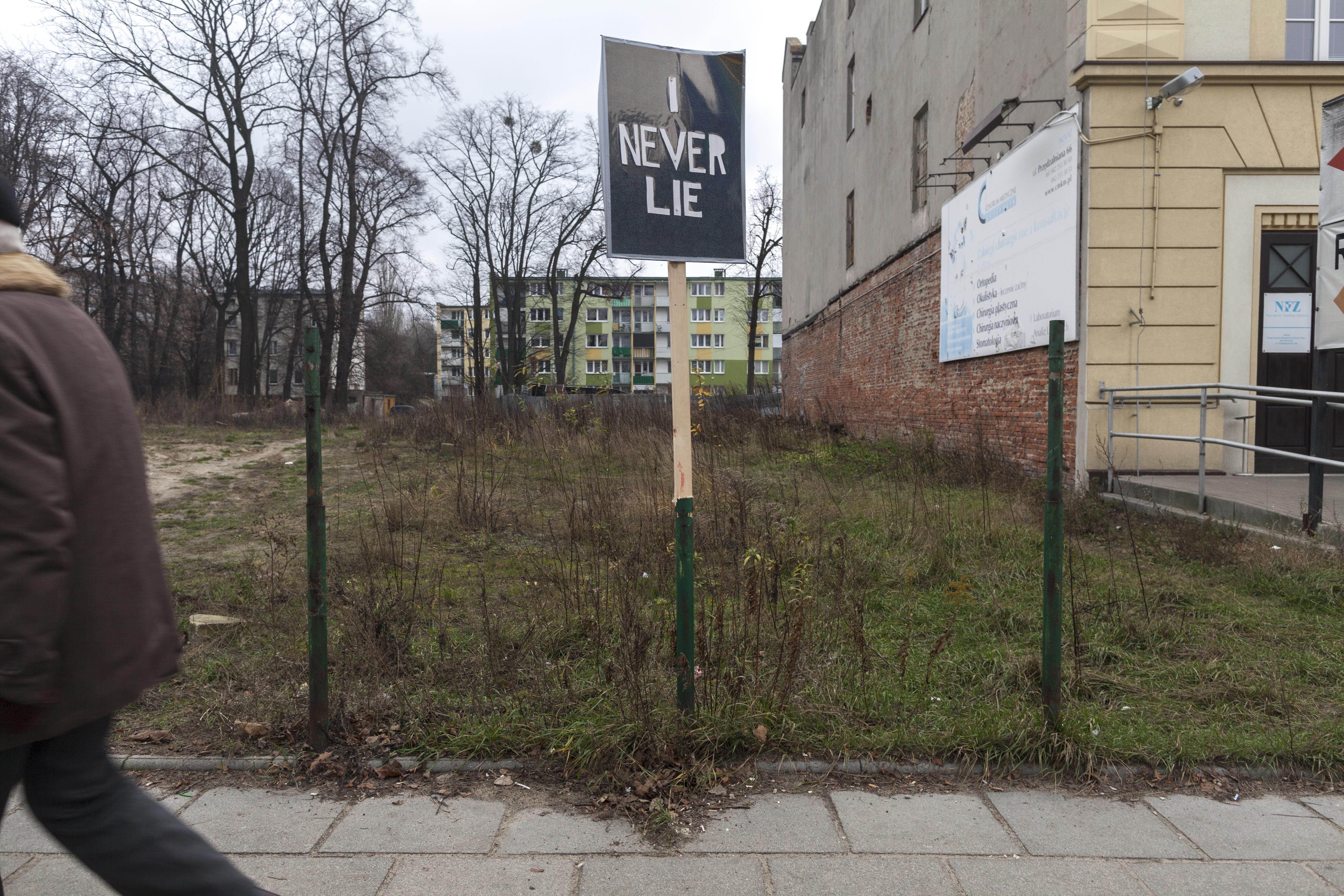 Dico Kruijsse,  INever Lie, winyl