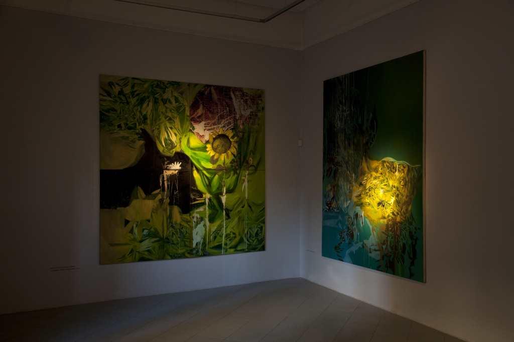 Agata Nowosielska, Wbarok, widok wystawy