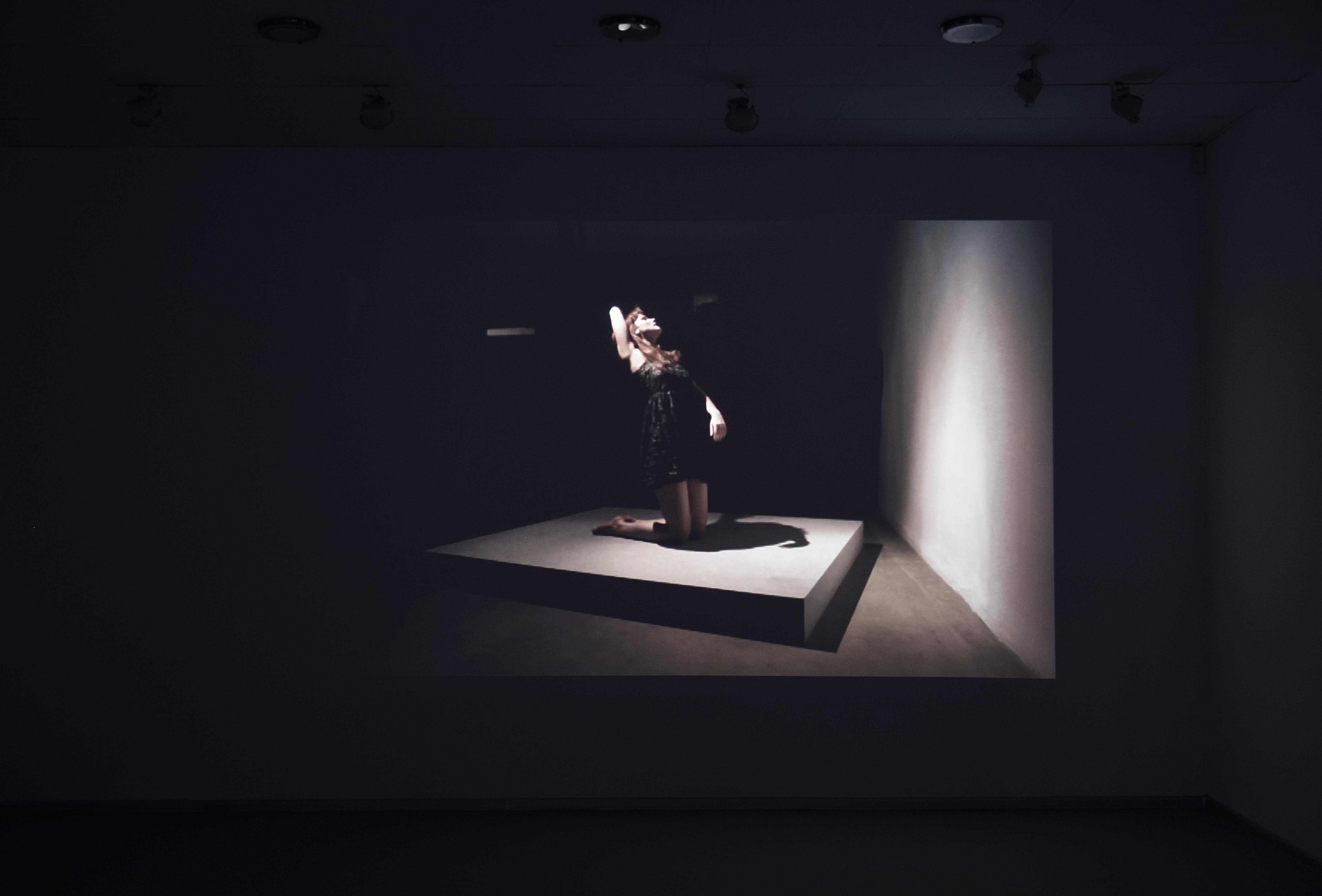 Zorka Wollny, Współprace, widok wystawy