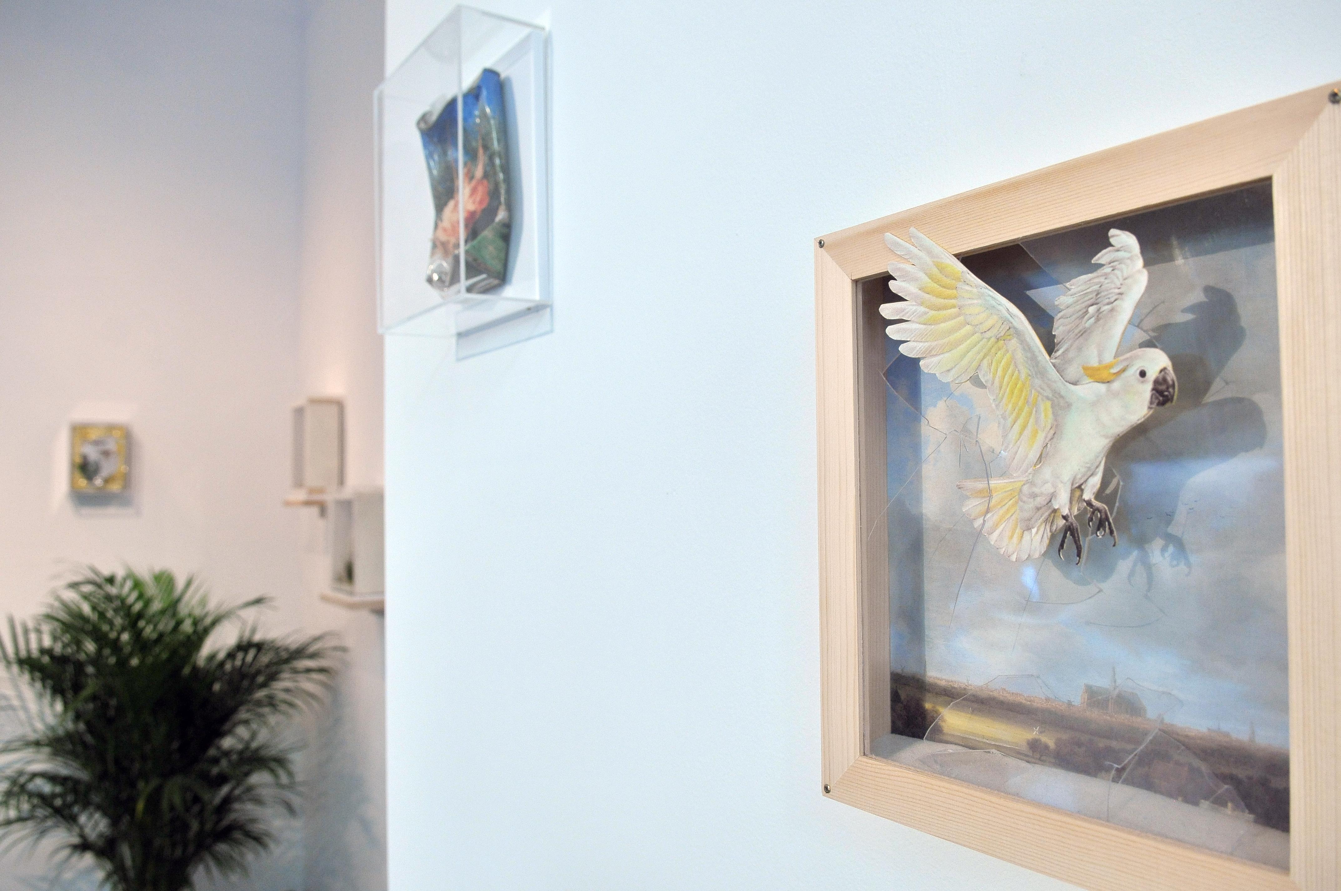 Egzotyczne?, widok wystawy, fot.Marek Krzyżanek