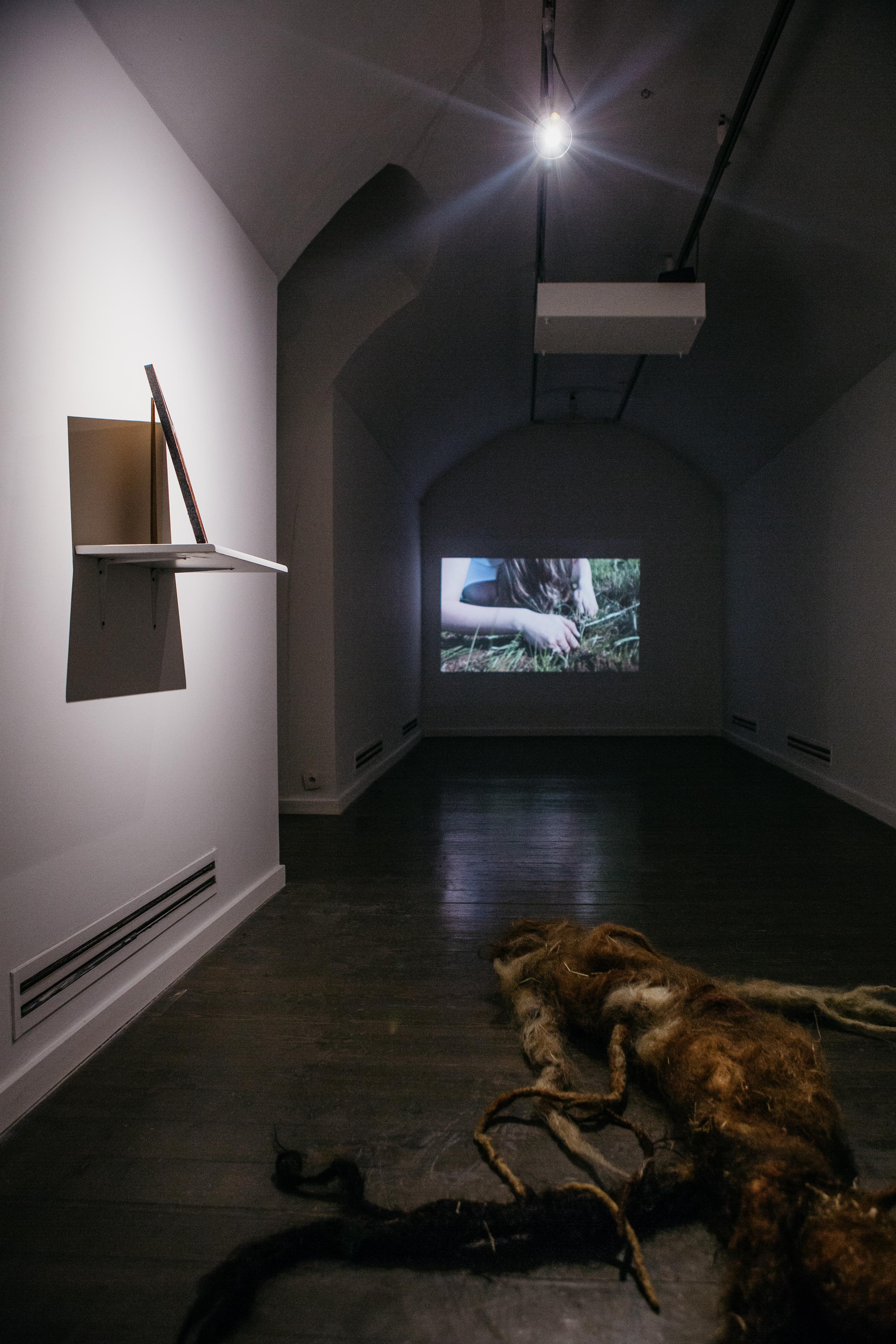 Walka oogień, widok wystawy