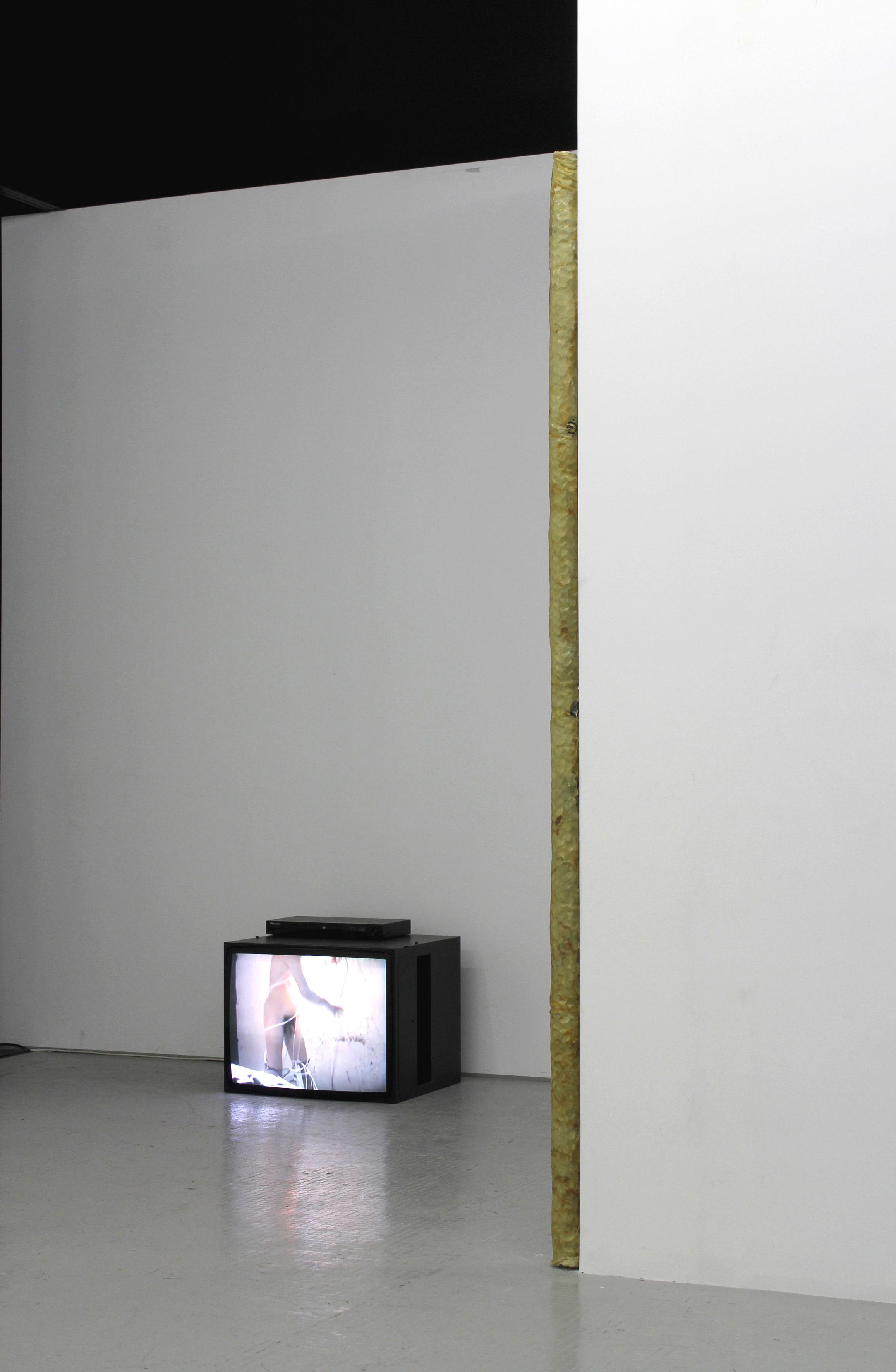 Alive For An Instant, widok wystawy