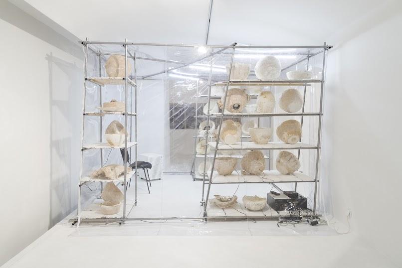 Nomeda iGiedyminas Urbonas, Dom psychotropowy: pawilon zooetyki itechnologii Ballardowskich, 2015