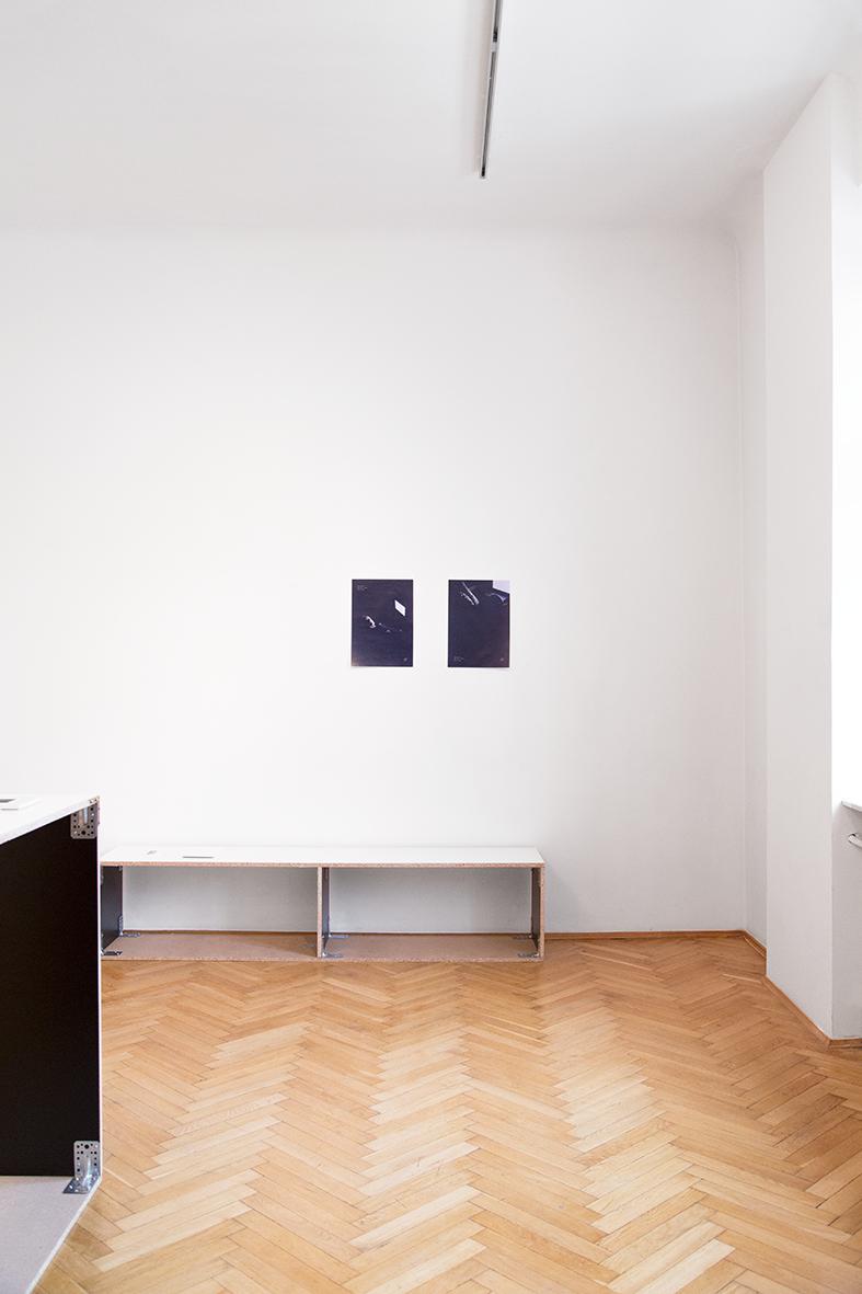 Carlo Zanni, Koh-i-N∞r, widok wystawy