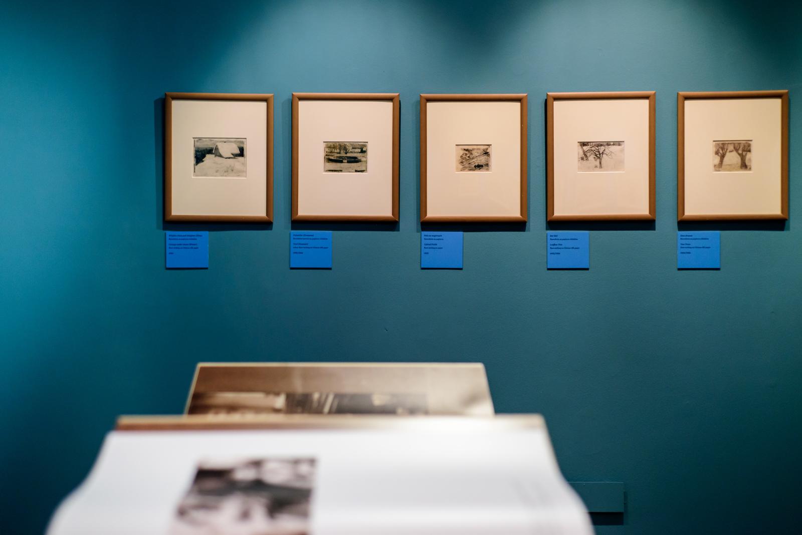 Litewska opowieść, widok wystawy