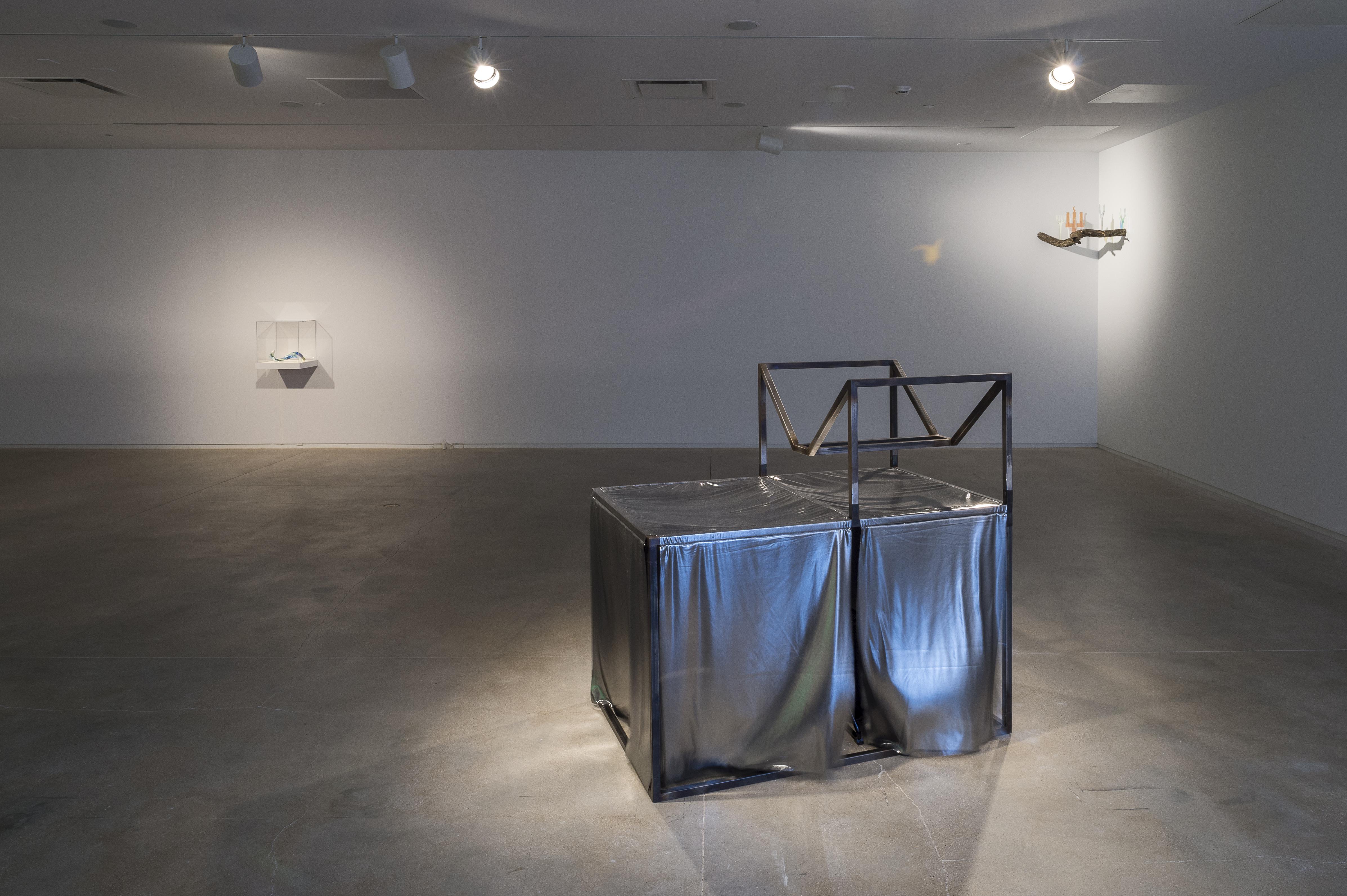 Mirrors for Princes, widok wystawy, dzięki uprzejmości Blaffer Art Museum