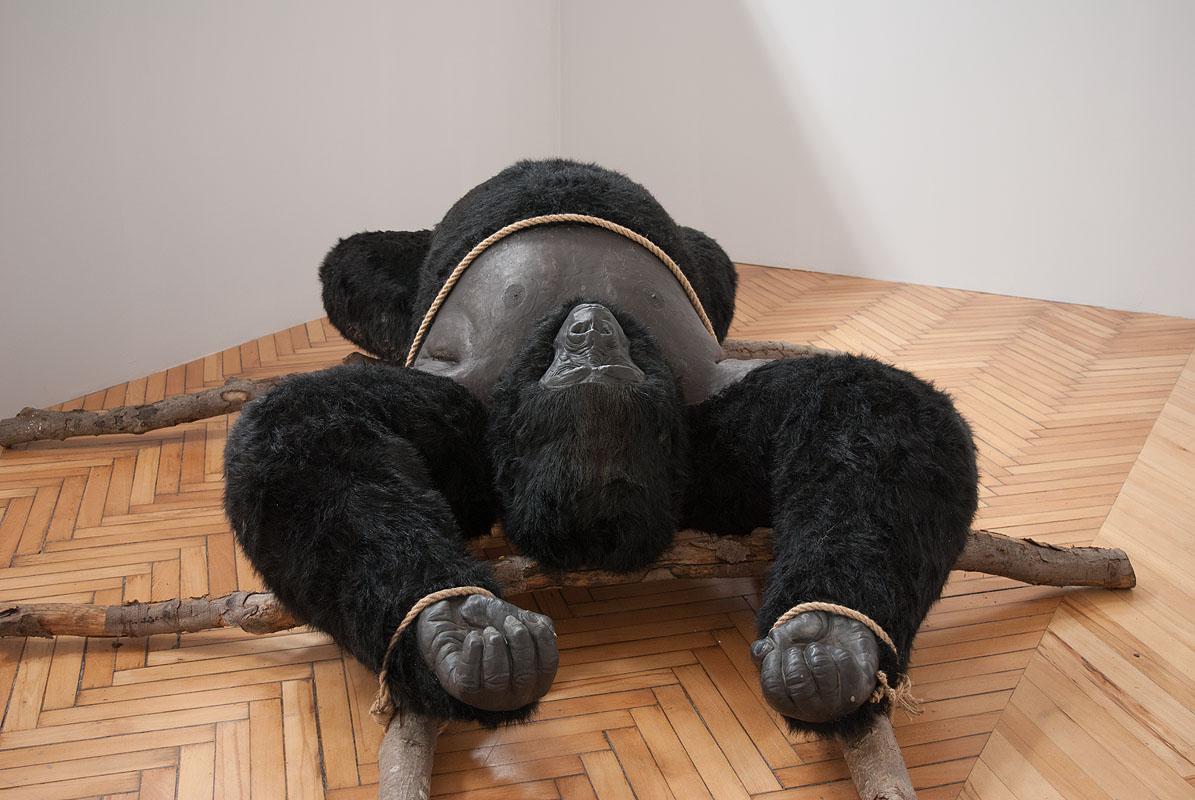 Bóg małpa, widok wystawy