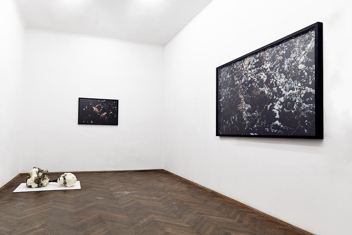 Przypomina mi się śnieg, widok wystawy, dzięki uprzejmości BWA Warszawa