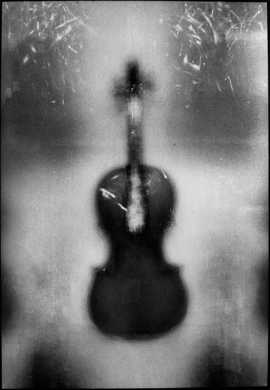 Krzysztof Pruszkowski, 196  skrzypiec. Fotosynteza, 1994