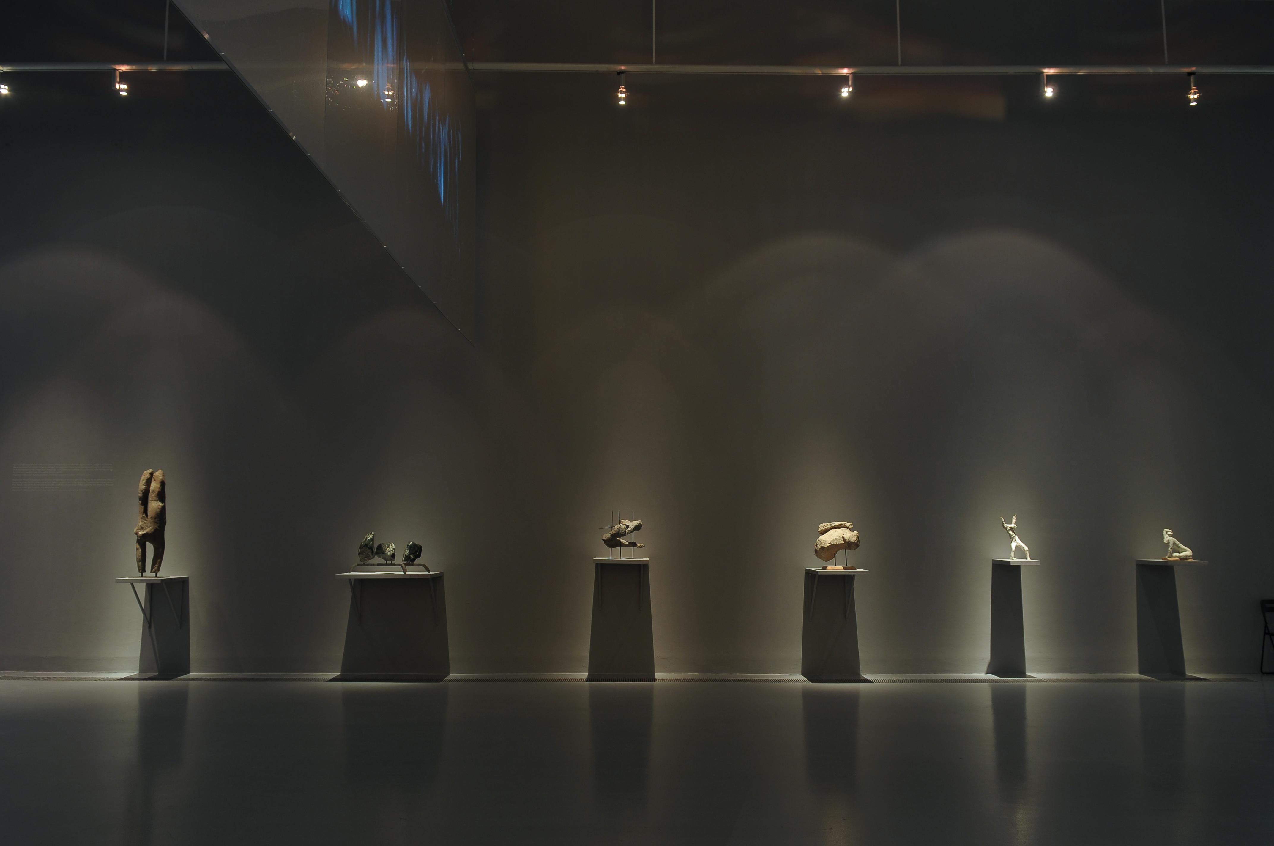 Magdalena Więcek, Działanie naoko, widok wystawy