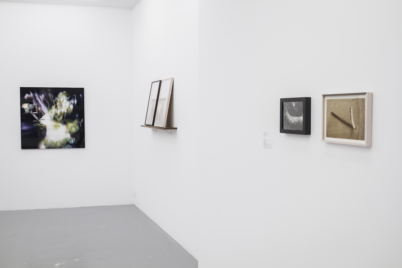 Interlaced surrounding, widok wystawy