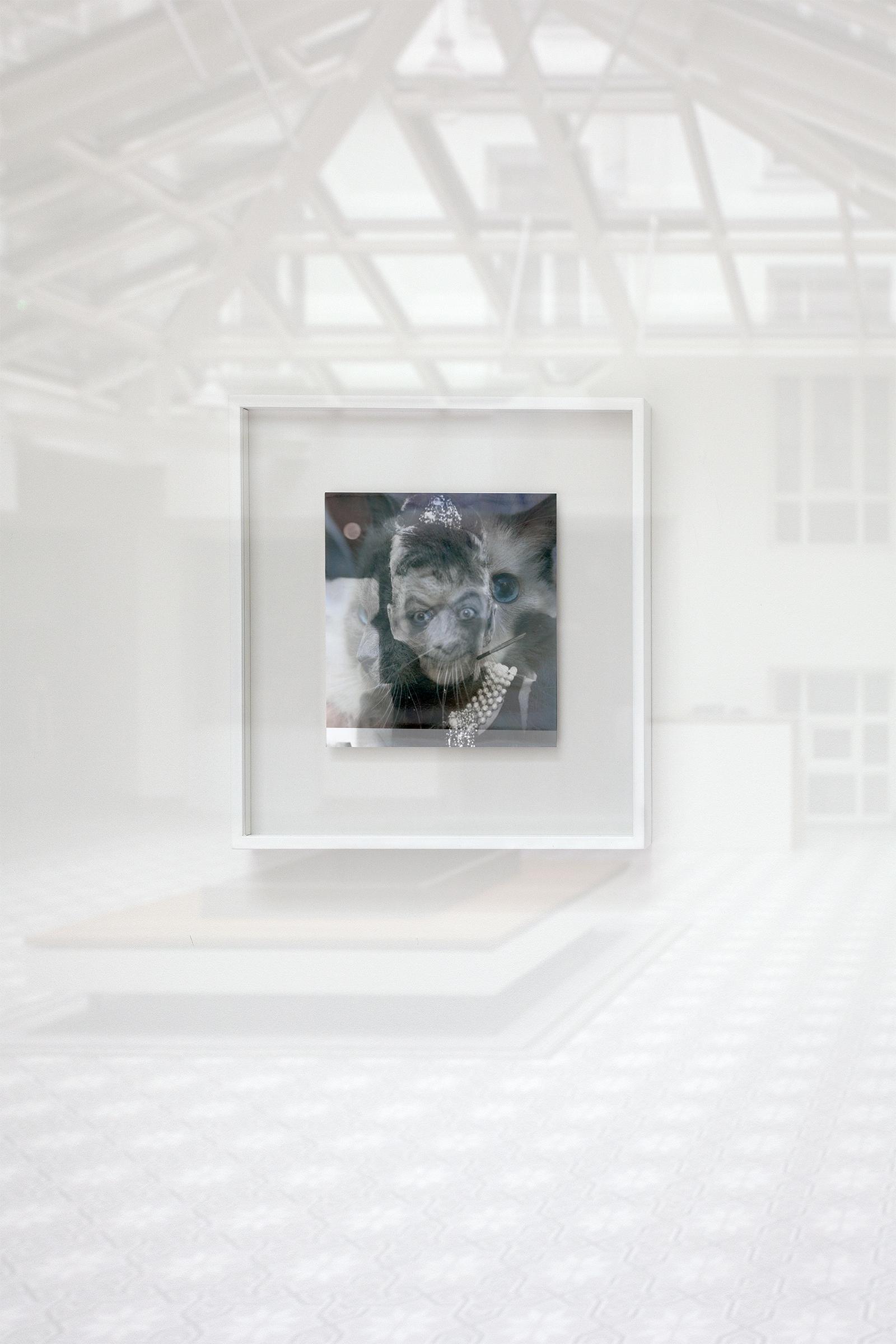 Agnieszka Brzeżańska, Matrix-Sratrix, widok wystawy, fot.Marek Gardulski, dzięki uprzejmości Artystki igalerii Kasia Michalski