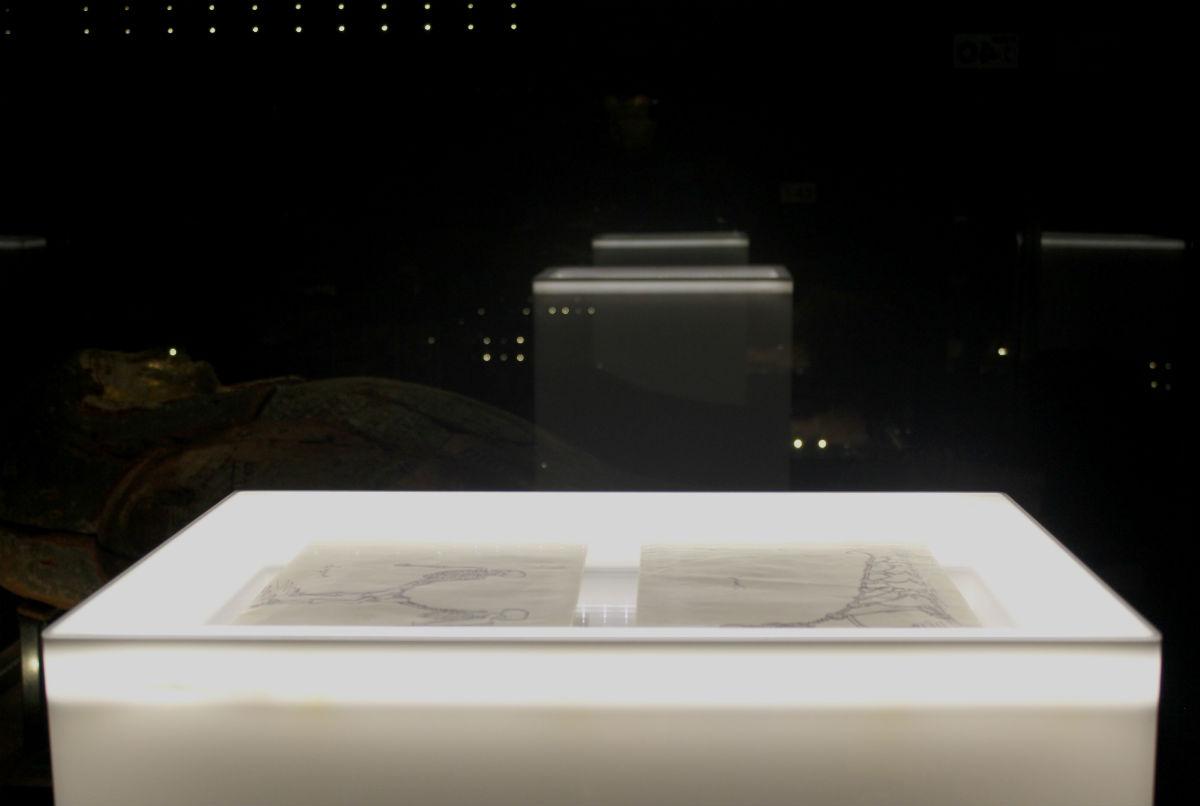 Gablota zrysunkami Stanisława Lema wsali egipskiej