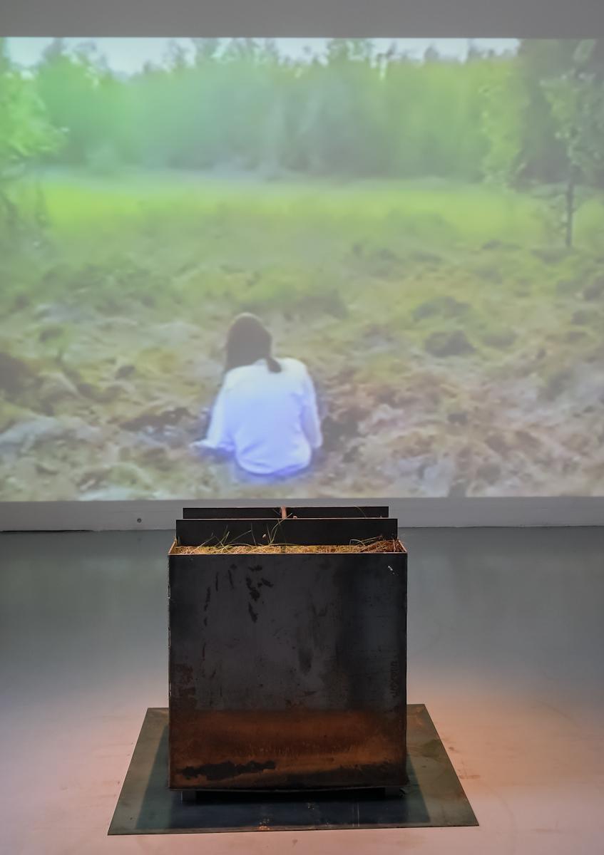 Teresa Kazimiera Murak-Rembielińska, widok ekspozycji, 2016, fot.Marek Krzyżanek