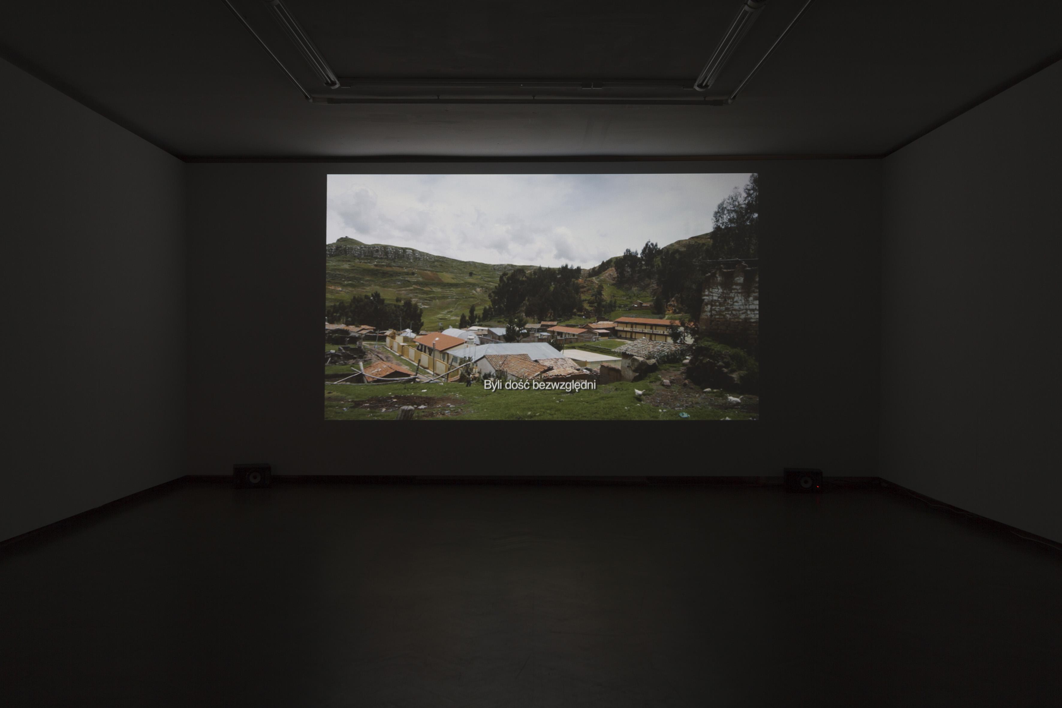 Corin Sworn, Czas lisów, widok wystawy