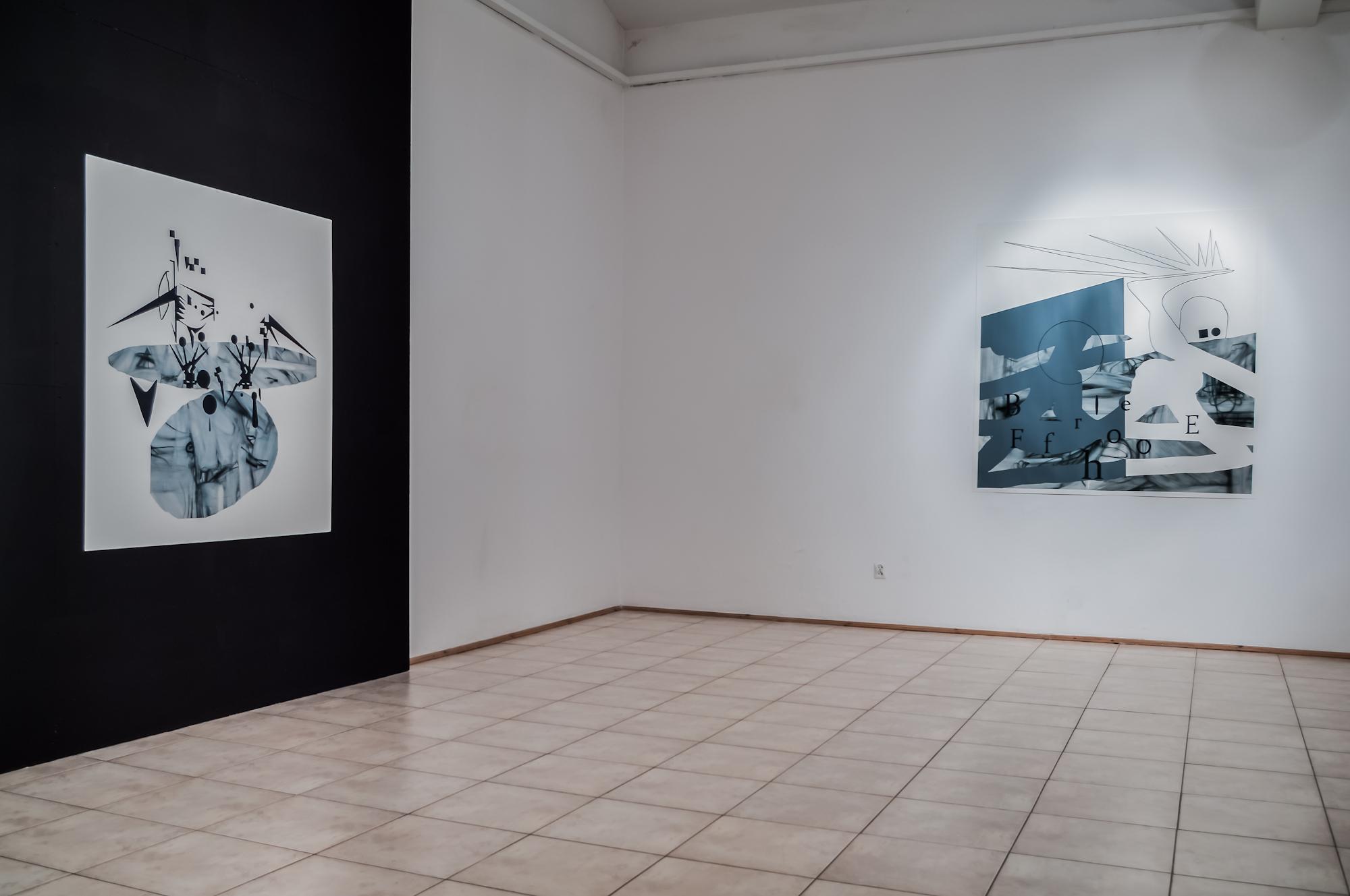 Marcin Jedlikowski, TUMULTUM, widok wystawy, fot.Paweł Litwin
