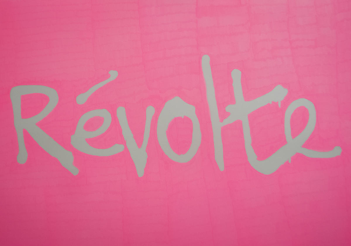Ovidiu Anton, Révolte, zserii Political Graffiti