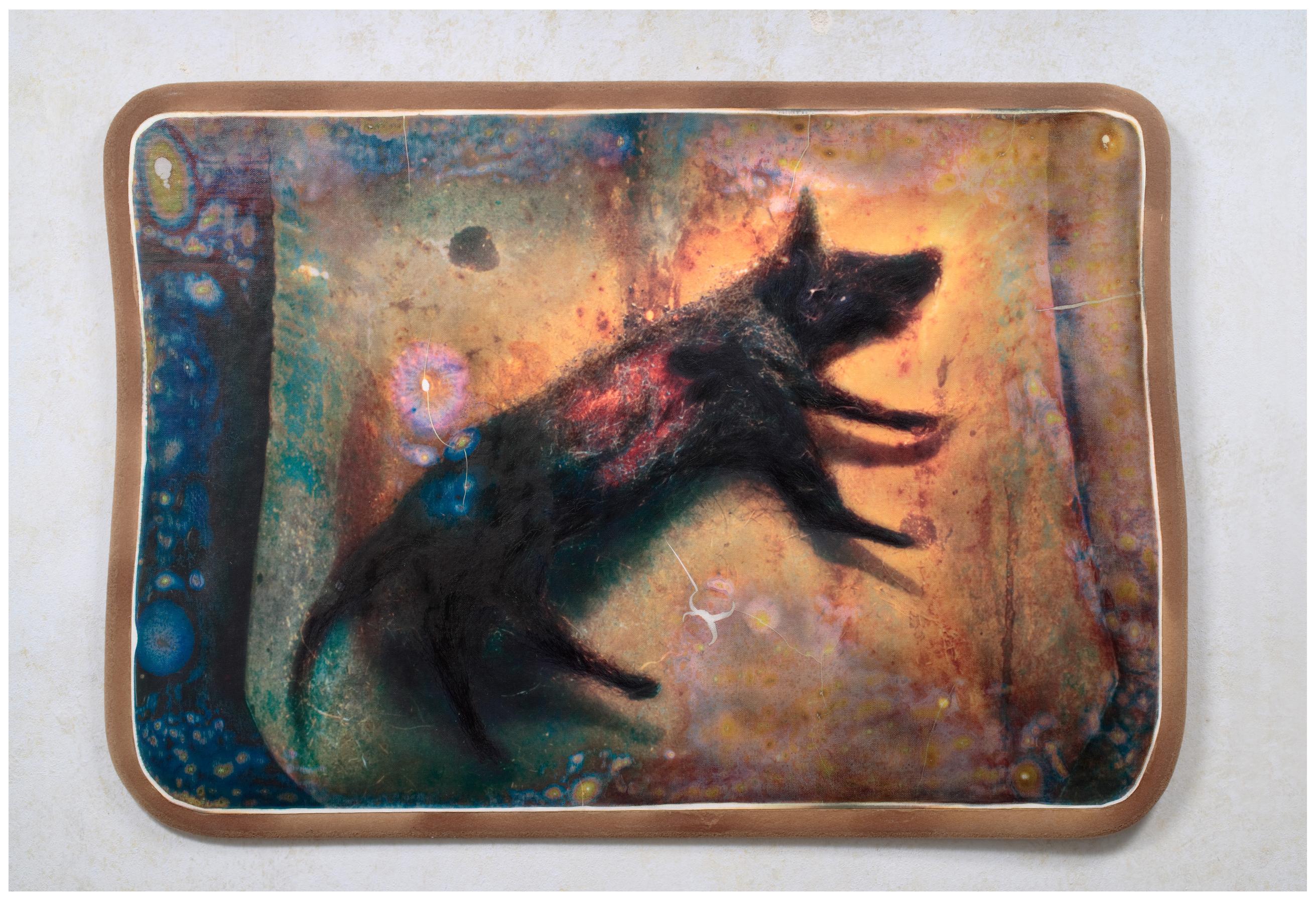 František Skála, Souhvězdí psa, 2006