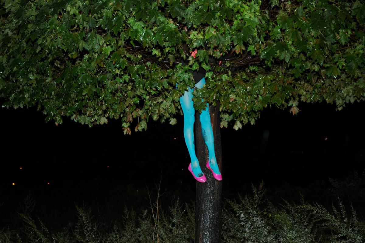 """365 Drzew"". Manifest"