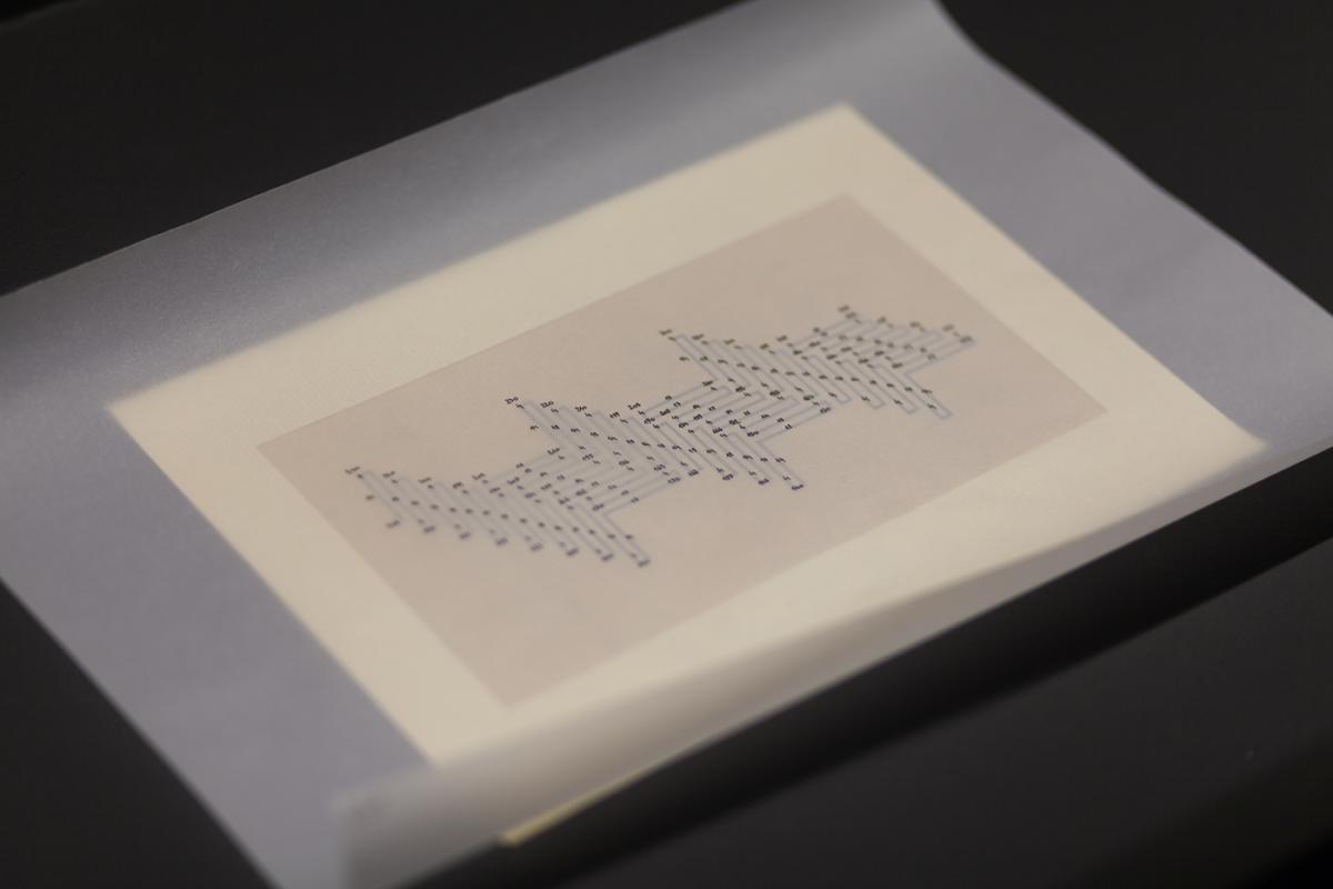"""""""Prototypy 02: Codex Subpartum"""" wMuzeum Sztuki wŁodzi"""