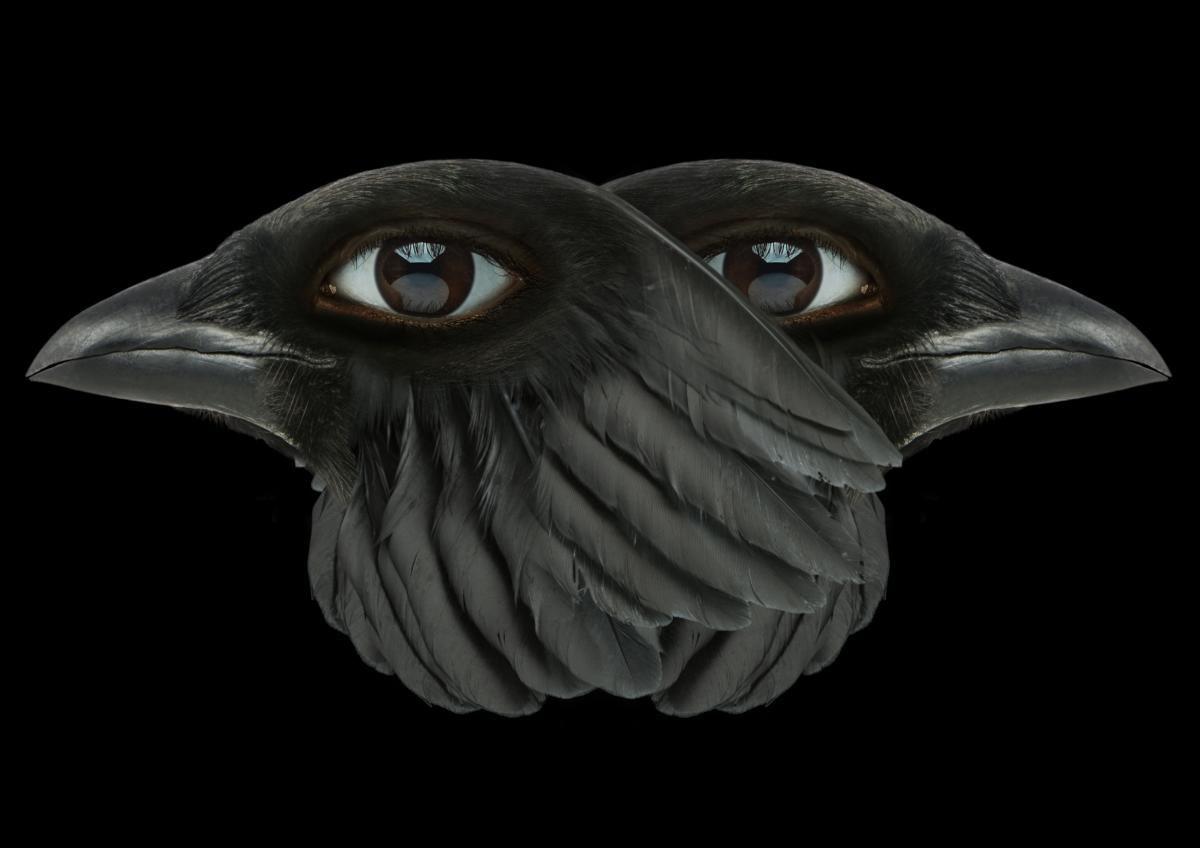 """""""The Demon's Brain"""" Agnieszki Polskiej wGdańskiej Galerii Miejskiej"""